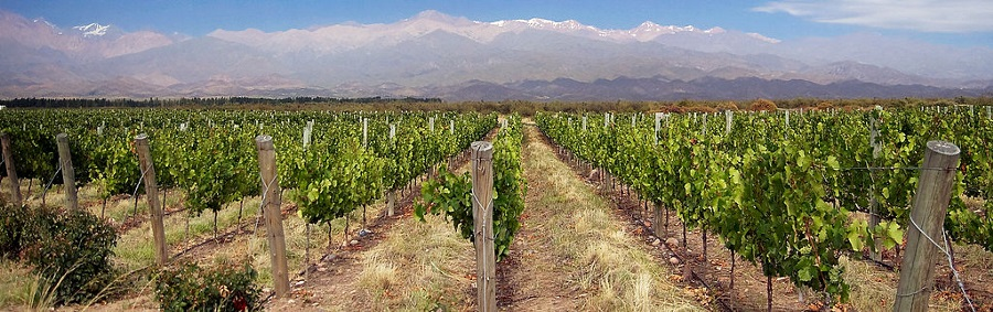 wine-bike-hike-mendoza-argentina